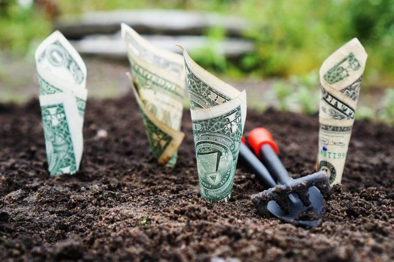 【貯金 vs 投資】メリットとデメリット