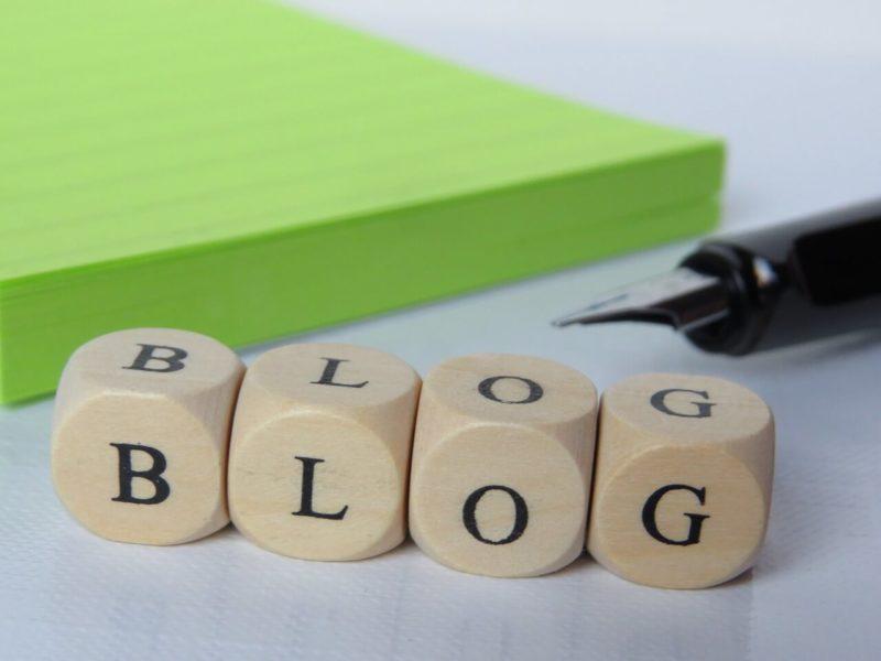 ブログ開始半年の考察